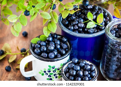 Fresh ripe bluberries (bilberries) in enamel mugs