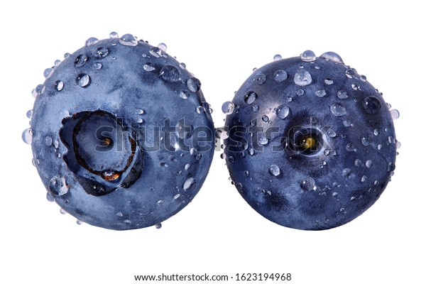 Fresh ripe blueberries with water drops isolated. Juicy sweet raw wet blueberry closeup design elements composition, focus stacking on white background. Tasty vitamin fruit, healthy nutrition clip art