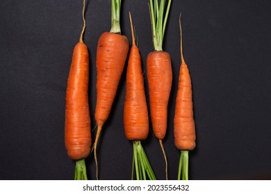 Fresh ripe carrots on a black background. Healthy vegetable