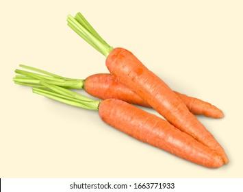 Fresh ripe carrots on a light desk