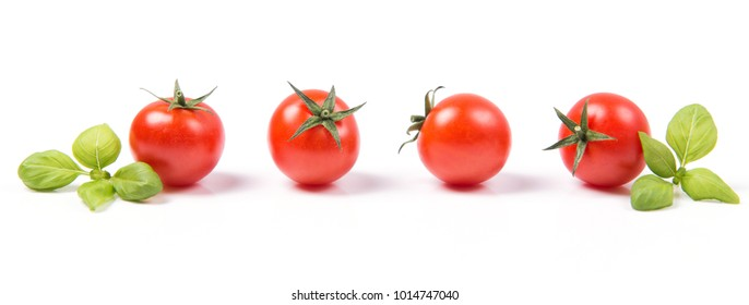 Fresh ripe cherry tomatoes with basil leaves in a row, isolated on white background, vegetable pattern