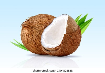 Fresh ripe coconut, coconut half piece with white flesh and palm leaves closeup isolated. Tropical coconut fruits composition with focus stacking. Full depth of field design element. Clipping path