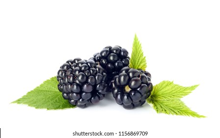 Fresh ripe juicy blackberries on white background