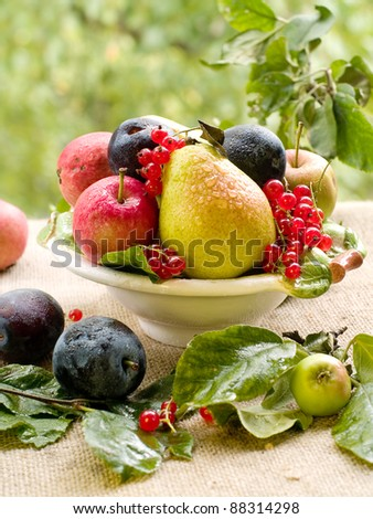 Fresh ripe pears, plums, red currant and apples in bowl on natural background. Selective focus