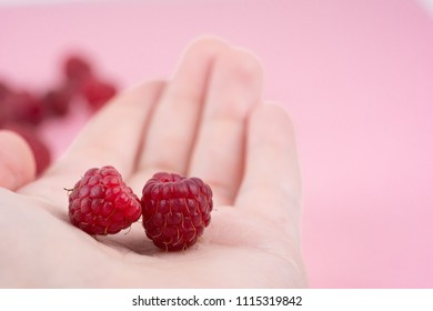 Fresh ripe raspberries on the hand on pink background. Close-up, minimal concept of fashionable food