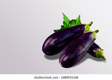 Fresh ripe raw aubergine or eggplant