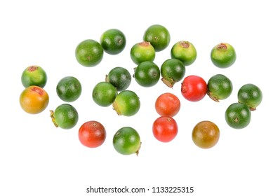 Fresh ripe and raw peppercorns isolated on white background.