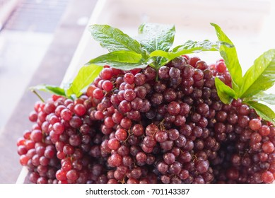 fresh ripe red grapes, beautiful background with a branch of blue grapes