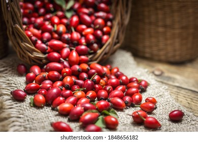 Fresh ripe rose hips in basket on the rustic background, close-up photo. Healthy nutrition concept.