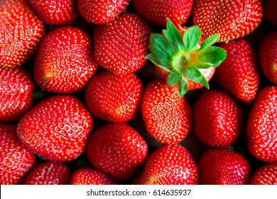 Fresh ripe strawberries and one upside down showing green leaves. Concept of unique and different