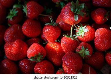 Fresh ripe strawberries and sunrays