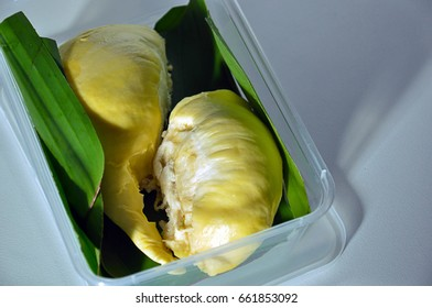 Fresh riped yellow delicious pieces of durian, the King of Fruits, wrapped with banana leaf in a box in closeup shot on white background. Famous fruit of Thailand, Malaysia and Singapore.