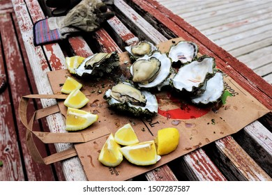Fresh roasted oysters and from Hood Canal Washington