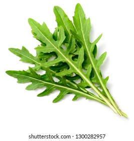 fresh rocket leaves isolated on white background, top view