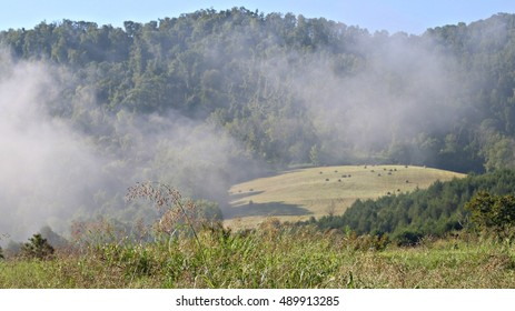 Fresh Rolled Golden Hay In Open Field Enveloped In Morning Fog With Tall Johnson Grass In Foreground On A Farm In The Mountains Of South West Virginia