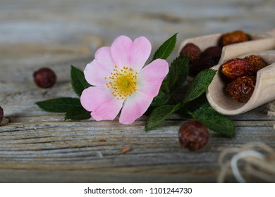 Fresh rose hip on a wooden surface. Closeup