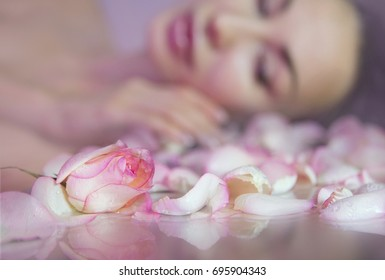 Fresh Rose petals, Pink rosebud. Blurred Woman face with clean Healthy skin on background. Rose Water, toning and skin cleaning. Beautiful Girl. Beauty and skincare. Rose Cosmetics. Spa Aromatherapy.