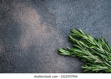 Fresh rosemary herb on a dark background copy space top