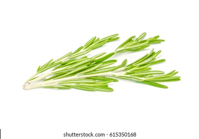 Fresh rosemary isolated isolated on white background cutout