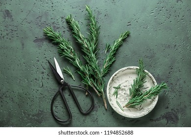 Fresh rosemary and scissors on color table