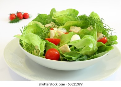Fresh salad with chicken breast,lettuce, tomatoes and mozzarella cheese