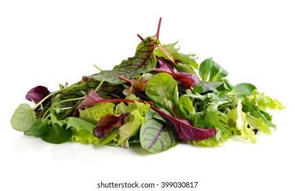 Fresh salad . Different mix of salad leaves