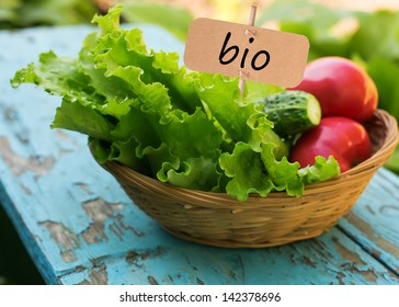 Fresh salad lettuce, tomato, cucumber in bucket. Tag with word bio.  Selective focus. Natural/bio/organic/eco products.