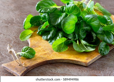 Fresh salad spinach leaves on slate background, copy space.