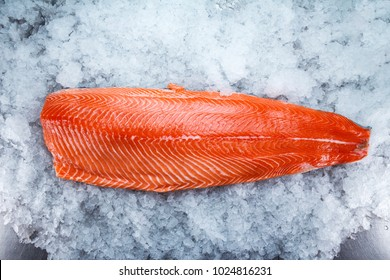 Fresh salmon fillet on ice.