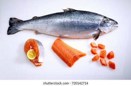 Fresh salmon fish on white ground