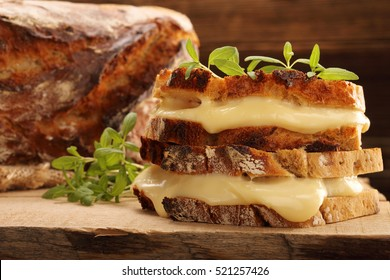 Fresh sandwich with cheese and herbs with empty space for text