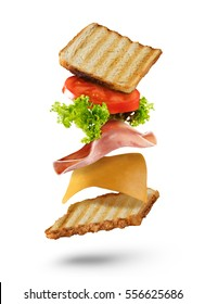 Fresh sandwich with flying ingredients isolated on white background. Copyspace for text, high resolution image