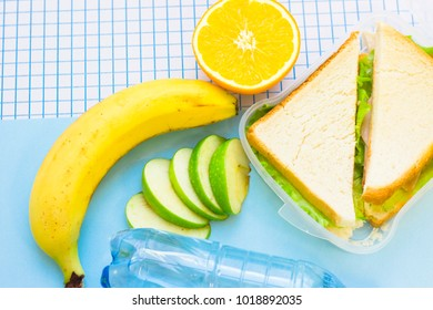 Fresh sandwich with lettuce in a plastic container, orange, banana,sliced green apple and a bottle of water, top view, blue and white squared paper background