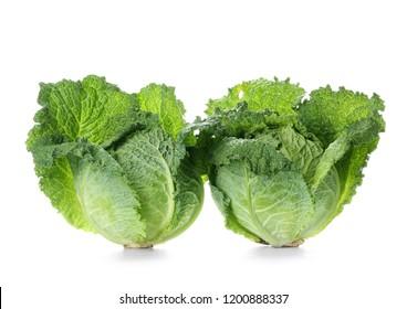 Fresh savoy cabbages on white background