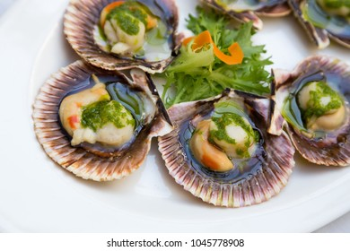Fresh scallops in the shell served in a fancy restaurant. Close up. Seafood starter creatively arranged on a white restaurant plate. Shellfish