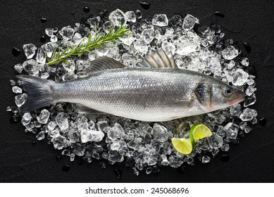 Fresh sea bass fish on ice on a black stone table top view