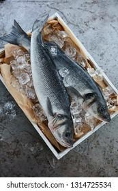 fresh sea bass shot from a high angle