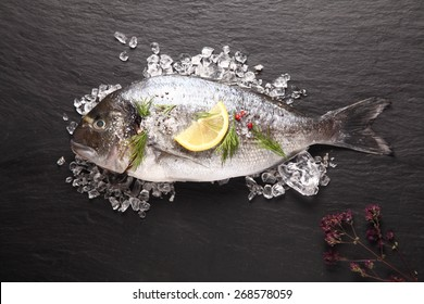 Fresh sea bream or dorade cooling on crushed ice with lemon and herbs waiting to be cooked for a delicious seafood dinner, view from above on slate