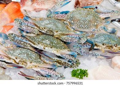 fresh sea crabs on ice