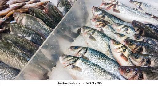 fresh sea fish in market