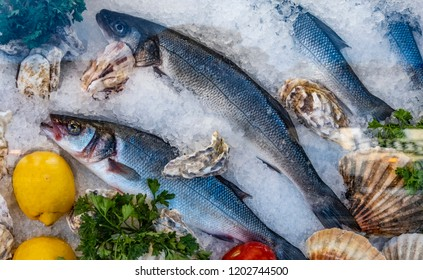Fresh sea food on ice. Market in Italy