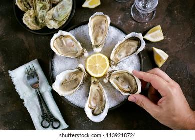 Fresh sea oysters on a large sea salt with lemon in mans hand. Healthy food, gourmet food, restaurant food.