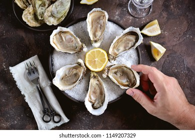 Fresh sea oysters on a large sea salt with lemon. Healthy food, gourmet food, restaurant food.