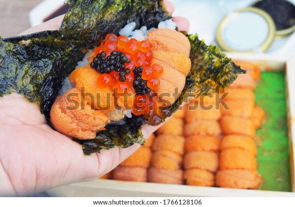 Fresh sea urchin (or uni), roe salmon and cavier over steamed rice and dried seaweed sheet. The best traditional food of Japan. Selective focus.