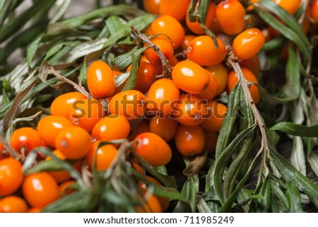 Fresh seabuckthorn on the vintage wooden table