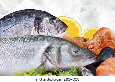 Fresh seafood arrangement displayed in market