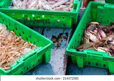 Fresh seafood in boxes at the fish market
