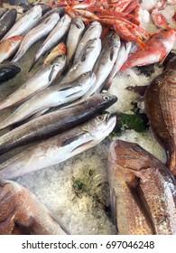 Fresh seafood displayed at fishmarket