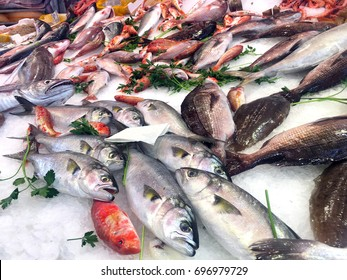 Fresh seafood displayed in the market