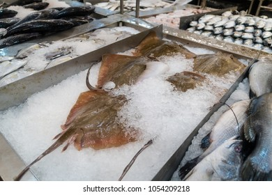Fresh seafood in local market